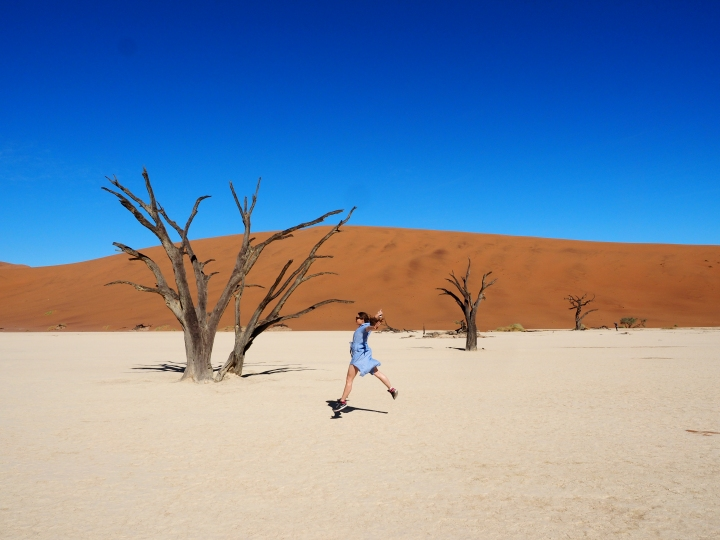 The Nature of Namibia