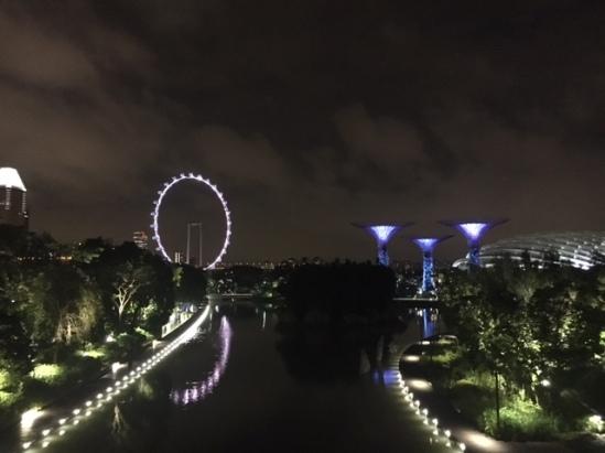 singapore8